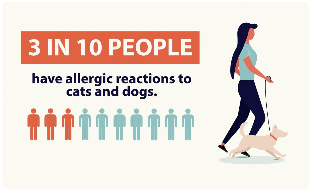 3 In 10 people have allergic reactions to cats and dogs.